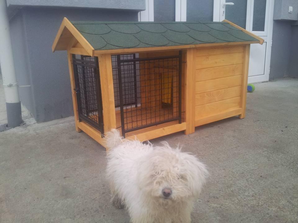 Kucica za pse sa zicanim boxom za manje rase pasa-pekinezeri i sl.